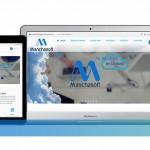 manchasoft-servicios-proyectosweb